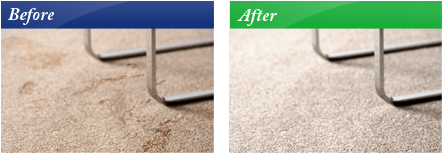 Carpet Cleaning Service Pro Services